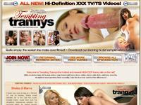 Tempting Trannys